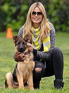 """Heidi Klum - """"Having Dogs is like having children"""""""