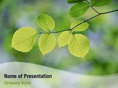 background images for powerpoint free - Google Search