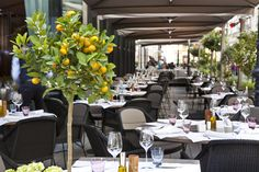 Stylish gourmet place in Vienna, Austria with Cane-line BREEZE chairs Indoor Outdoor, Outdoor Living, Weathered Furniture, Restaurant Bar, Table Decorations, Dining, Vienna Austria, Places, Interior
