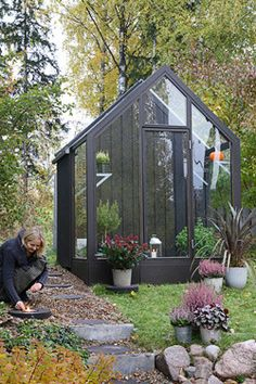 Black Greenhouse