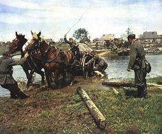 Third Reich Color Pictures: Animals of the Third Reich in Color. Eastern front 1941 ...