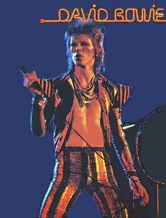 The Ziggy Stardust Companion - Gallery 155