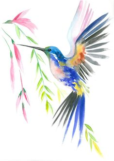 Birds of Paradise, Set of Watercolor print Watercolor animalism Painting Illustration, Poster and Wall decor Hummingbird Drawing, Watercolor Hummingbird, Watercolor Bird, Watercolor Paintings, Watercolor Portraits, Watercolor Landscape, Abstract Paintings, Bird Drawings, Canvas Art