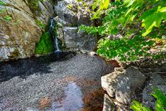 Along the south west side of the property line of this secluded acre site is a brook that cascades over a and forms a natural hole for you to enjoy. Nova Scotia, Waterfront Property, Acre, Swimming Pools, Real Estate, West Side, Natural, Halibut