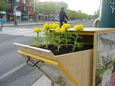 Love this!  http://www.mnn.com/lifestyle/recycling/blogs/torontos-guerilla-gardener