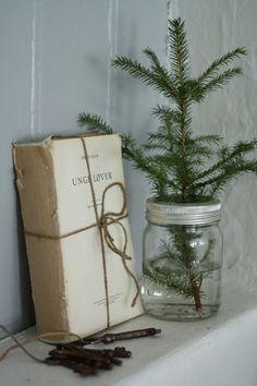 Pine branch in jar
