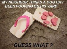 Do I advocate revenge pooping in your neighbors yard? No. Do I think dog-print sandals are awes? Yup.