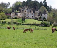 Le château de la Grande Filolie (XVe - XVIIe) près de Montignac (Dordogne) - Yvan Lemeur