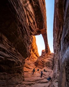 12 Best Hikes in Arches National Park | Territory Supply Arches National Park Hikes, National Parks, Zion National Park, Mystery Photos, Arches Np, Best Hikes, Travel Usa, Beach Travel, Places To See