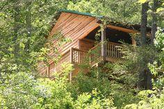 Appalachian Mountain Vacation cabin in... - VRBO