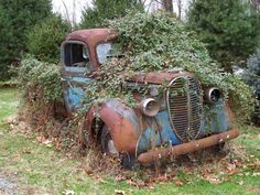 1939 Ford- hope this is a flowering vine- would be spectacular.