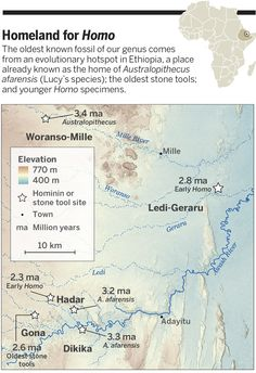 News.ScienceMag.org/*** Fossil pushes back human origins 400,000 years