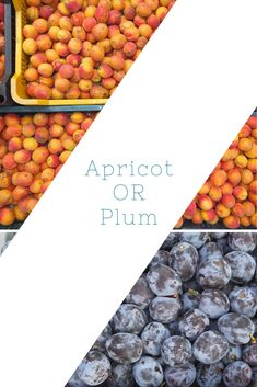 Which is your choice? Do you want some Apricot? Or Plum? 📞 call us: Fresh Fruits And Vegetables, Plum, Canning, Home Canning, Conservation