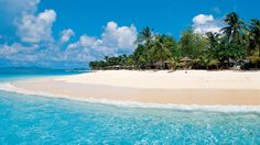 Palm Island All Inclusive Resort in the Grenadines- fly to Barbados then take a ferry to this gorgeous island!