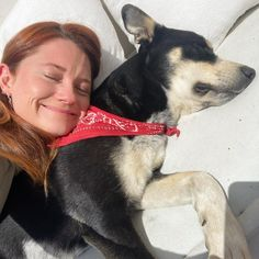 Bonnie Wright, Harry Potter Cast, Boston Terrier, Dogs, Blue, Animals, Queens, Celebs, Display