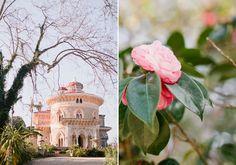 Camelias // Sintra // Portugal // Monserrate // Flowers // Romantic