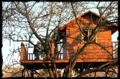Domeček na stromě - tree house