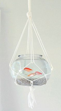 DIY Hanging Macramé Fish Bowl