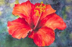 Watercolor Hawaiian Flower