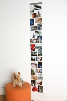the best thing for dorms, a wall of photos without messy tape or heavy frames
