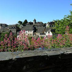 #donzenac #villageetape #correze #limousin #toit #ardoise #toitcorrezien #toitenardoise #fleurs #fleursquipoussentdansunmuret