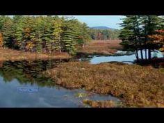 Last Days Of Autumn... (Amazing Pan Flute Music)