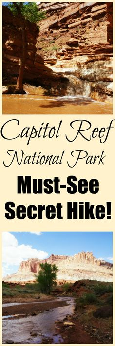 Hike through the river to a series of waterfalls in Capitol Reef National Park.  This is one of the most fun hikes you will ever do!