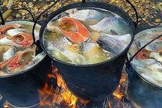 2 conserve de pește extraordinare pe care le puteți prepara acasă. Învățați să le conservați corect. - Bucatarul Top 5, Ethnic Recipes, Food, Essen, Meals, Yemek, Eten