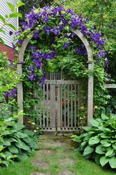 Love this charming gate and arbor ~ spring Climbing Clemantis and Hostas ~ Vintage Home