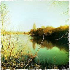 Chipstead Lake