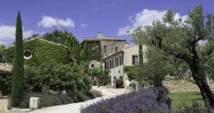 I can almost smell the lavender at Chateau D'Estoublon in #Provence. #travel #France