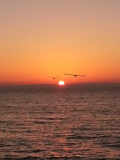 Beautiful Naples Sunset!