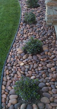 Check out this amazing landscaping idea for a backyard or front yard #easylandscapefrontyard