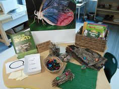 Thinking and Learning in Room 122: We're Going On a Bug Hunt! Bug provocation with manipulatives included. -KK