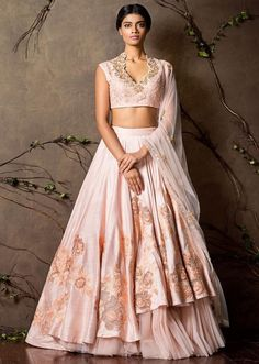 Light Pink Cut Work Embroidered Silk Lehenga