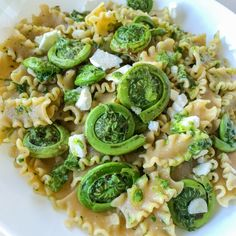 """NEW Real Recipe: Pasta with Fiddleheads in Basil Pesto  This deliciously seasonal recipe comes to us from Fina Scroppo - The Healthy Italian.  Don't say """"Arrivederci"""" to Fiddlheads before trying this delicious recipe!  RECIPE: http://www.realfoodtoronto.com/blog/real-recipe-pasta-with-fiddleheads-in-basil-pesto/"""