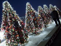 """Namsan Christmas Love - """"Locks of Love"""" trees at N'Seoul Tower on Namsan Mountain shine brightly with twinkle lights in the snow.  Couples create special memories at this romantic spot to leave padlocks with messages to one another.  For more information on N'Seoul Tower and Namsan Mountain, visit: http://english.seoul.go.kr/cav/att/namsan.php"""