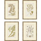 Found it at Wayfair - Sea I by Ziffer 4 Piece Framed Graphic Art Set