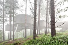 Meandering Through Old Pine Trees: Spectacular Sohlbergplassen Viewpoint in Norway - http://freshome.com/2014/05/19/meandering-old-pine-trees-spectacular-sohlbergplassen-viewpoint-norway/