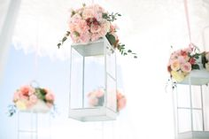 Hanging Lanterns adorned in Pink