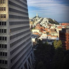 parkmerced:Some views are better from the side. TransAmerica Pyramid and Coit Tower. SF. San Francisco, California