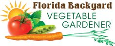 Florida Backyard Vegetable Gardener - hand pick the seeds for higher temperatures & humidity. All seeds are non- GMO, open pollinated heirlooms. #fallvegetablegardeningflorida