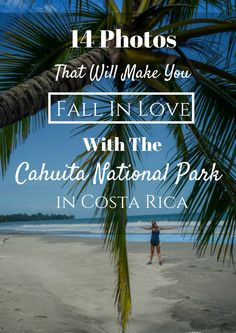 Why You Need To See Cahuita National Park- A Photo Essay that will make you fall in love!