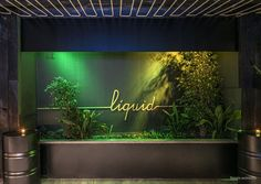 LIQUID CLUB OLOT