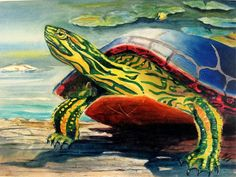 ORIGINAL 9X12 Watercolor  Painted Turtle on a Log cottage decor by Barry Singer