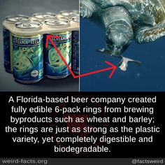 Weird Facts - A Florida-based beer company created fully edible rings from brewing byproducts such as whea - Angst Quotes, In This World, Change The World, Save Our Earth, Beer Company, Faith In Humanity Restored, Wtf Fun Facts, Cool Inventions, The More You Know