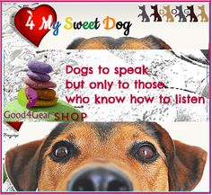 GOOD4GEAR SWEET DOG Sweet, Dogs, Movies, Movie Posters, Candy, Film Poster, Doggies, Films, Popcorn Posters