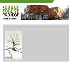 I love this banner design from DC's Urban Forest Project