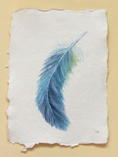 Feather original watercolour painting study illustration art drawing set collection. £30.00, via Etsy.