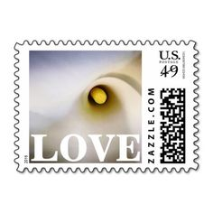 Add stamps to all your different types of stationery! Find rubber stamps and self-inking stamps at Zazzle today! Vow Renewal Invitations, Wedding Invitations, Wedding Anniversary Gifts, Anniversary Parties, Vow Renewal Ceremony, Love Stamps, Save The Date Magnets, Self Inking Stamps, Calla Lily
